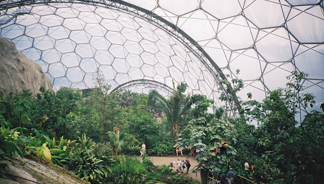 Eden Project Tropical Biome Thumbnail