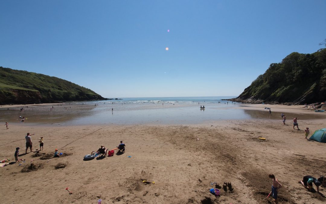 Helping to Support A Greener Cornwall: Introducing The 'Love Where You Are' Project
