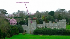 Rabbit Warren - At Caerhays Castle